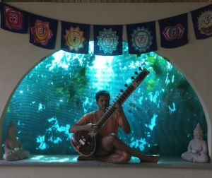 Click to enlarge image siddhartha playing sitar.jpg